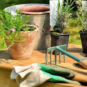 Kit Herramientaspara cuidar el jardín