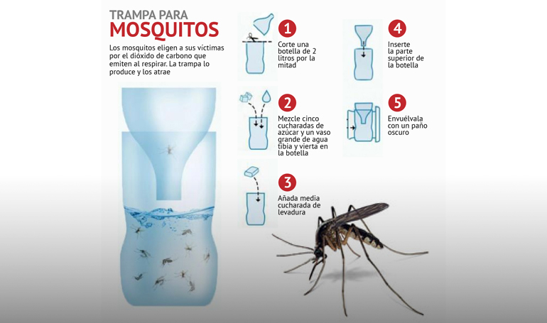 Como hacer una Trampa para mosquitos exterior